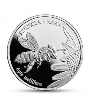 20 zł Pszczoła Miodna 2015