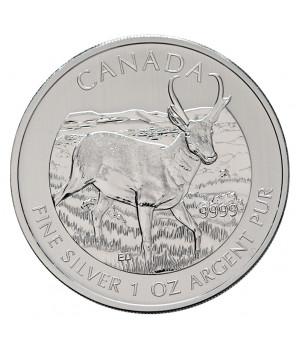 Kanada 5 dolarów Antylopa